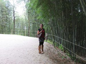 Surrounded by bamboo