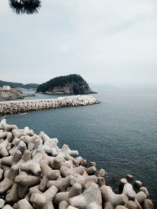 Yeosu is a coastal city. We took this picture on a recent visit