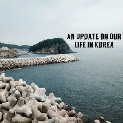 An Update on Our Life in Korea